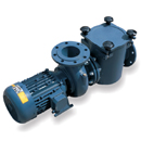 BP Cast Iron Pump