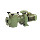 Astral Aral C-3000 Pump 3HP 3 Phase